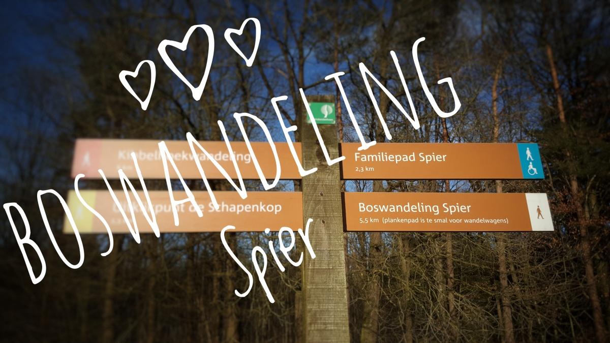 Wandelroute Boswandeling - Dwingelderveld