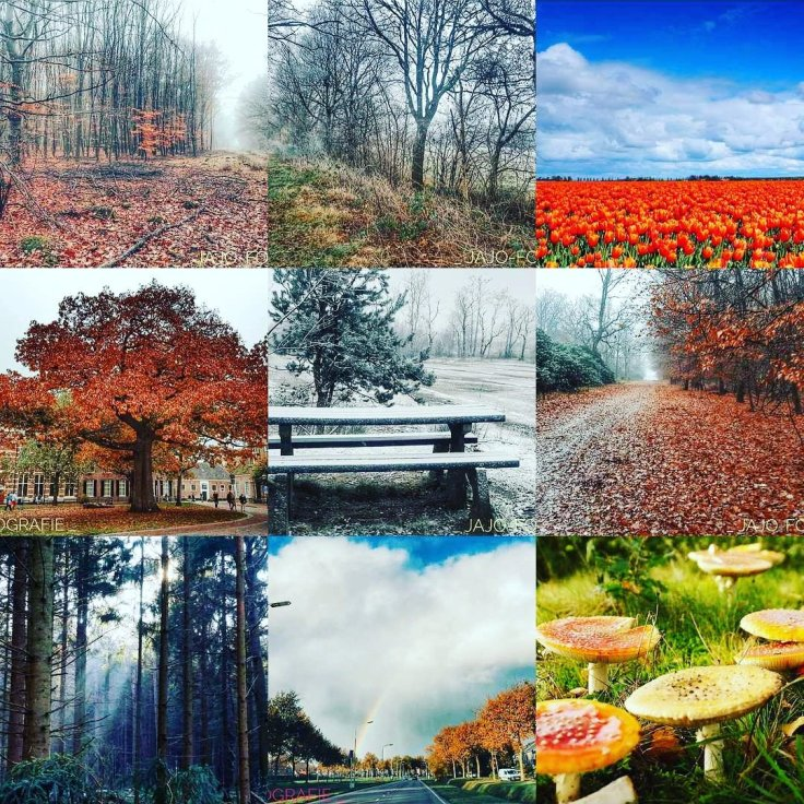 Instagram, best nine, natuur,