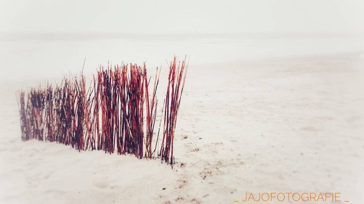 Maandoverzicht Januari, Ameland, zee, waddeneiland