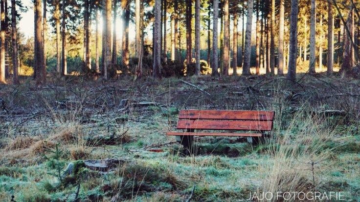 Drenthe, wandeling, natuur, paaltjes.