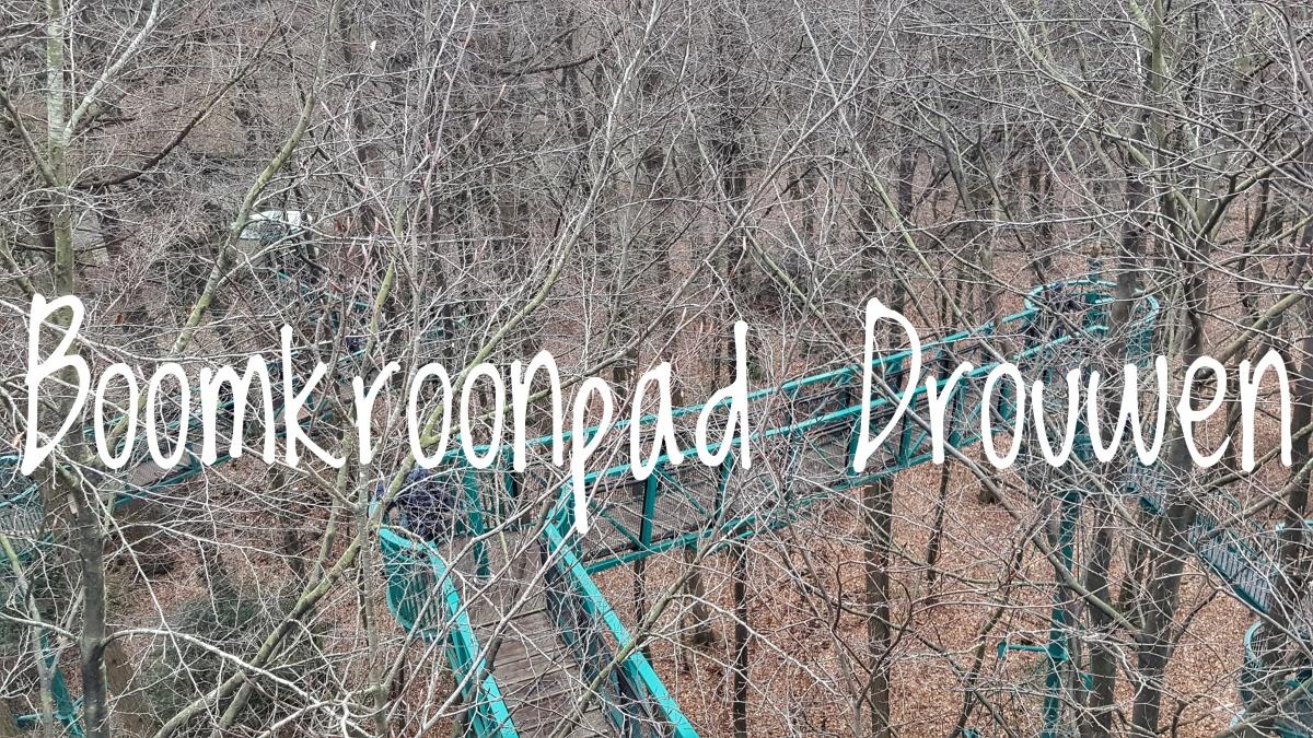 Boomkroonpad - Drouwen