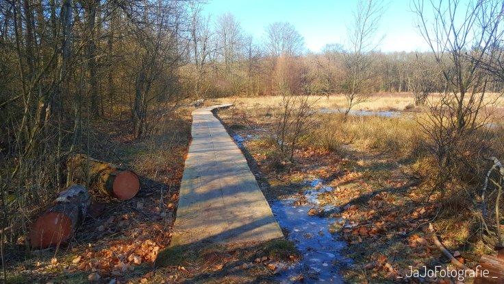 Drenthe, wandelen, plankenpad, Schoonloo