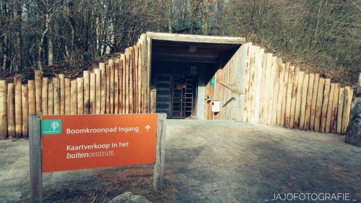 Staats bosbeheer, Drenthe, bos, landschap.