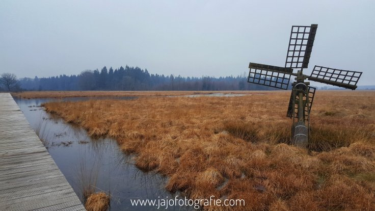 Tjasker, Veenpluisroute, Drenthe, Grolloo