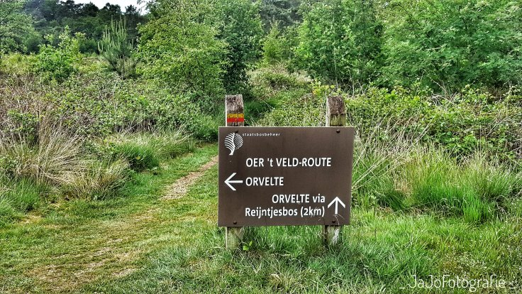 Oer't Veld Route, Drenthe, Orvelte, Wandelen, Drents Landschap, Staatsbosbeheer.