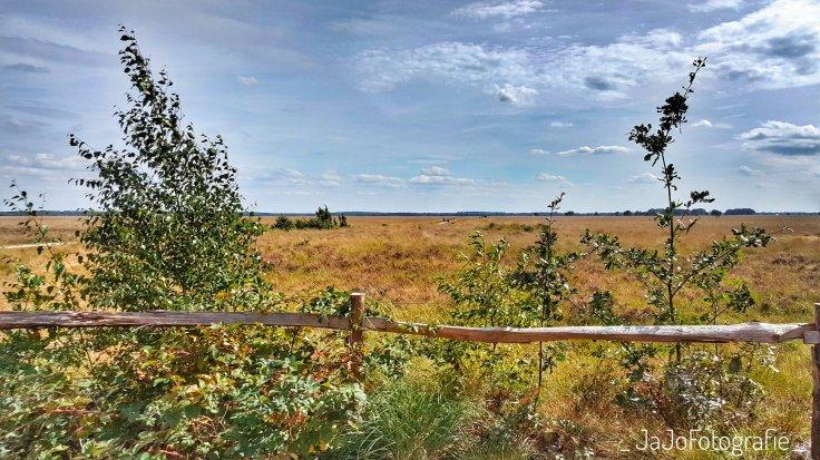 Telescoop Route, Wandelen, Dwingeloo, Drenthe, Westerveld