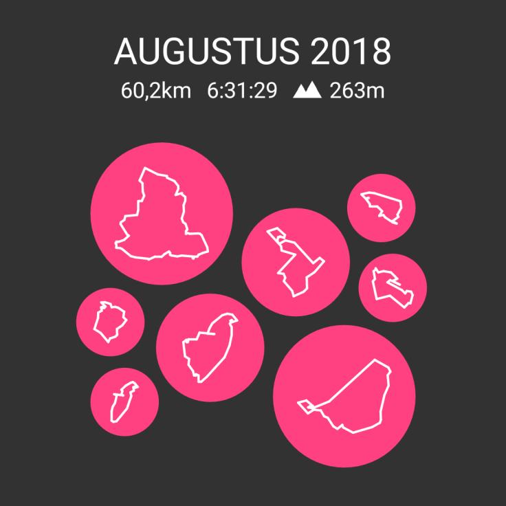 Hardlopen, Strava, Velographic, rennen, Assen, 4 mijl van Assen,