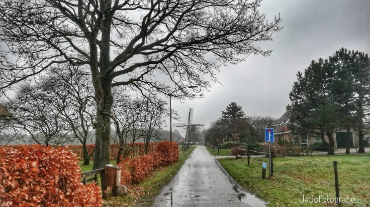Oudemolen, Molensteeg, Wandelen, Wandeling, de fazant, wandelen in Drenthe, wandeling Oudemolen.