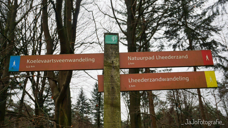 Dwingelderveld, Lheerderzandroute, Lheerderzand, Wandelen, OerDrenthe, Staatsbosbeheer, Natuur monumenten,