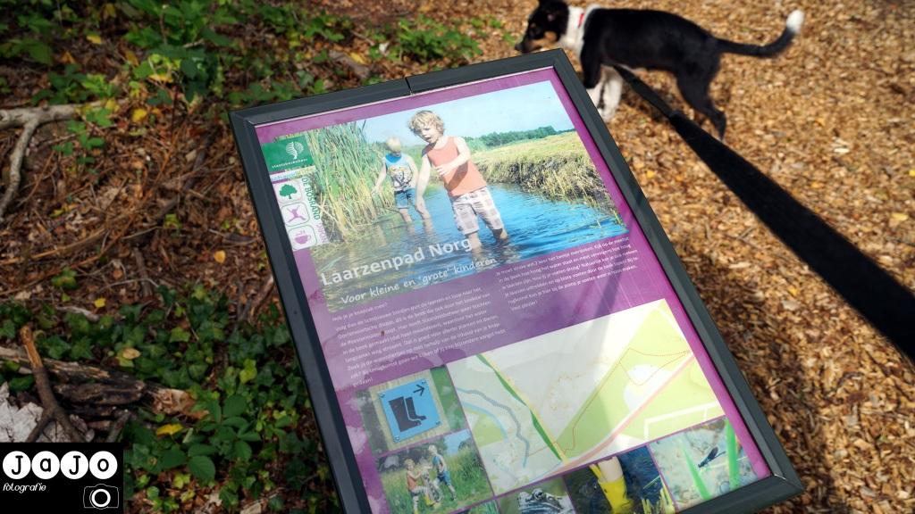 Informatiebord van et Laarzenpad in Norg. Puppy, Wandelen, Laarzenpad, Staatsbosbeheer, Drenthe, Norg, Natuur, Landschap, Vlinder, Flora en Fauna.