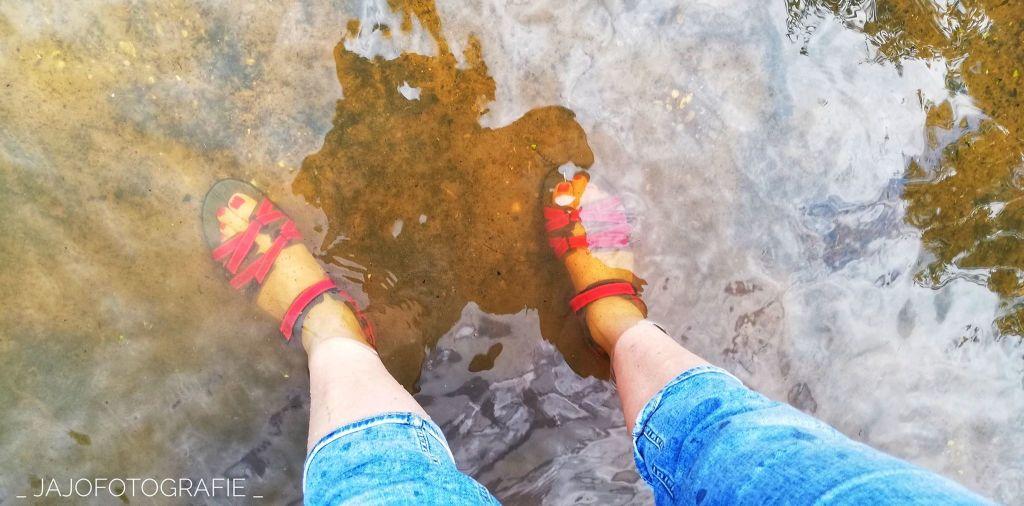 Met blote voeten het water in. Puppy, Wandelen, Laarzenpad, Staatsbosbeheer, Drenthe, Norg, Natuur, Landschap, Vlinder, Flora en Fauna.